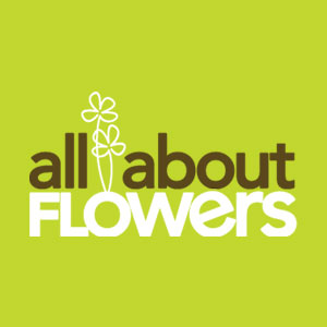 all-about-flowers